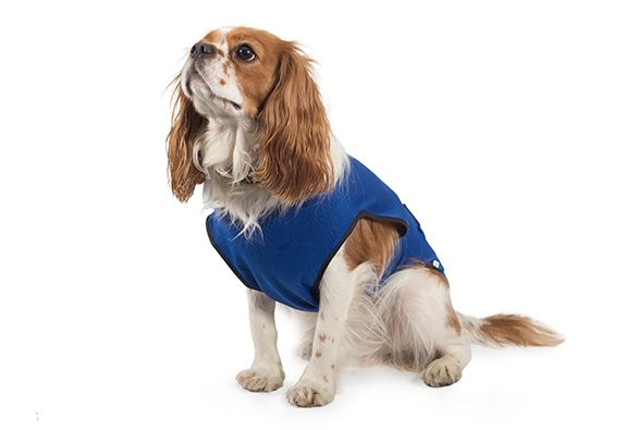 Ancol Cooling Dog Coat