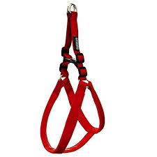 Explorer Padded Dog Harness - Red