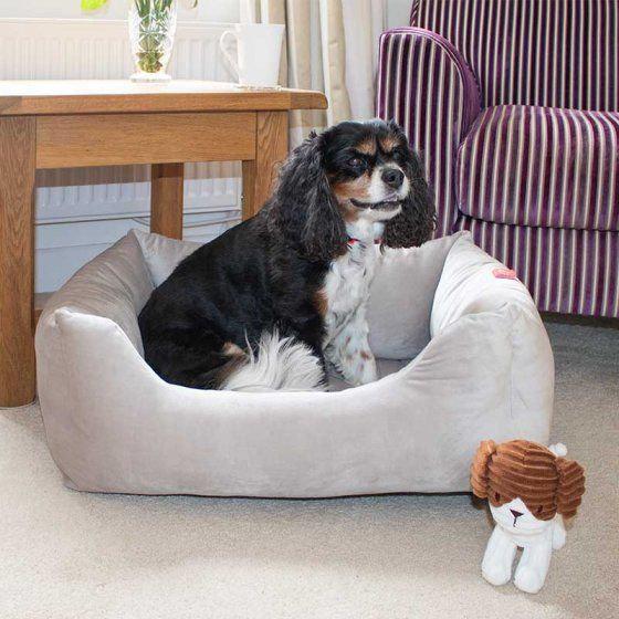 Silver Velour Square Dog Bed